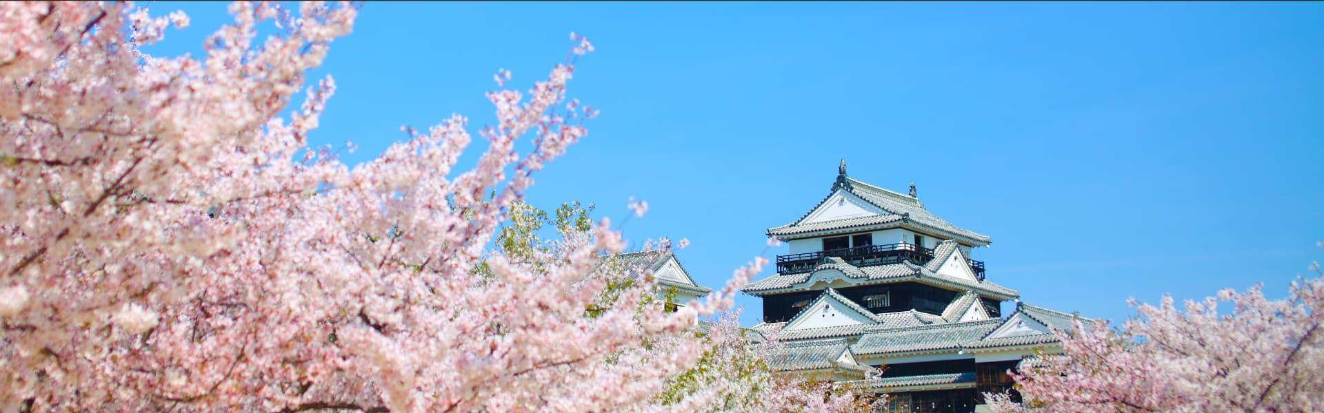 松山市を観光する