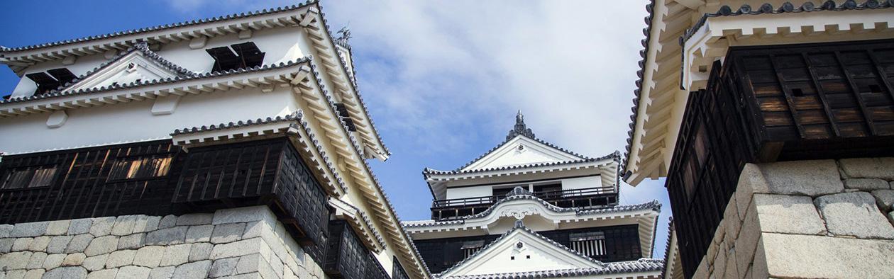 【松山王道コース】松山を1日で観光するならこちらがおすすめ!松山の見所を1日で巡るコース。